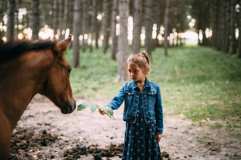 jeune fille nourissant un cheval