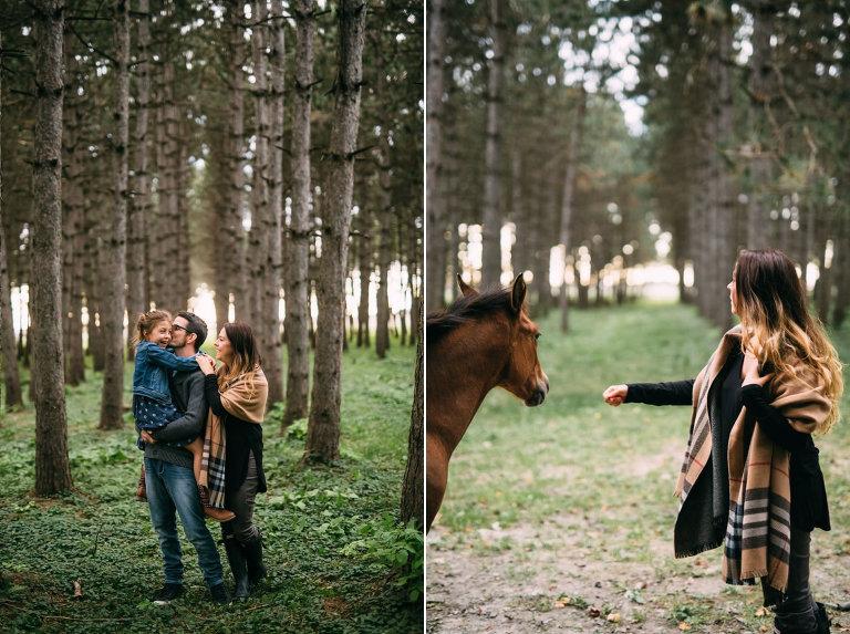 22_rencontre_avec_des_chevaux