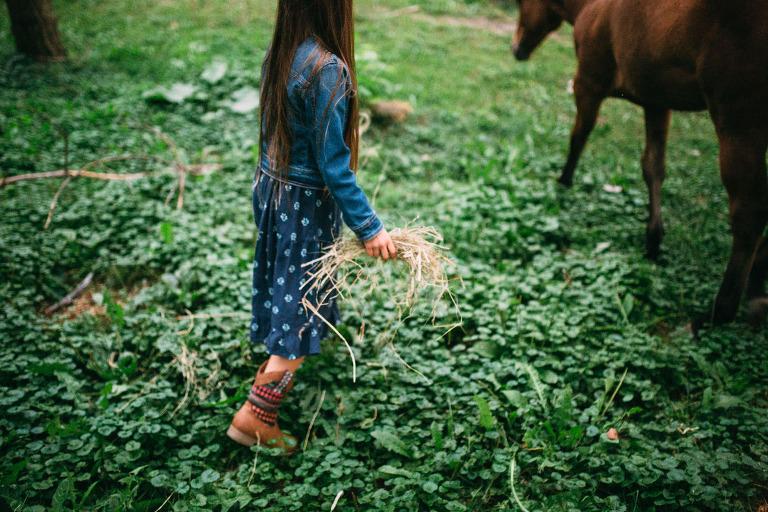 jeune fille donnant à mager à un cheval